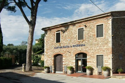 Villa San Luigi, Location Villa à Terricciola - Photo 32 / 36