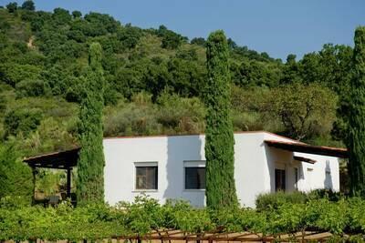 Charmante maison de vacances avec piscine privée à Palinuro