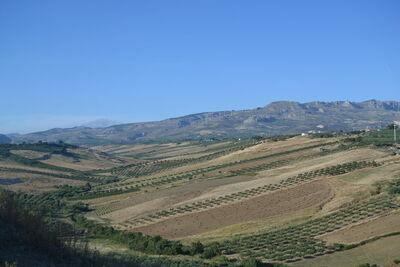 Montalbano Quattro, Location Maison à Sciacca - Photo 30 / 34