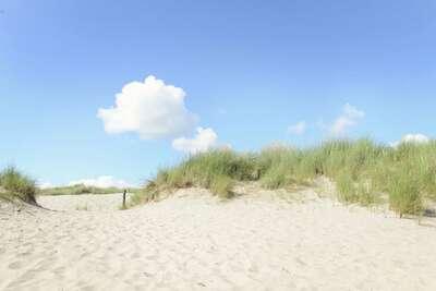 Storm Bries, Location Maison à Callantsoog - Photo 16 / 18