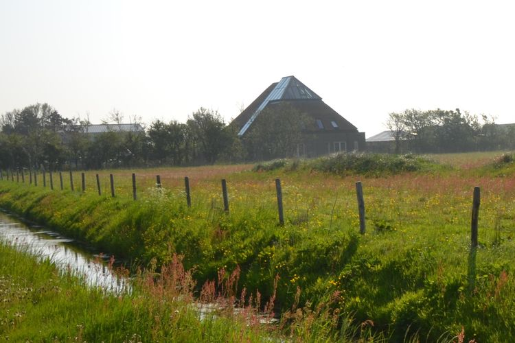 Hoeve Landzicht 22 pers, Location Gite à Callantsoog - Photo 0 / 39