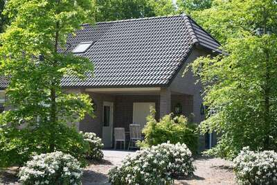 Luxueuse maison design avec cheminée aux Bedafse Bergen