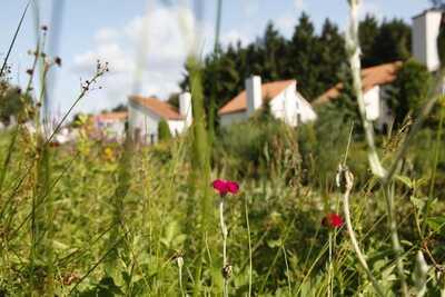 Resort Arcen 7, Location Chalet à Arcen - Photo 32 / 33