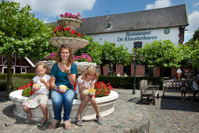 Résidence Klein Vink 3, Location Villa à Arcen - Photo 8 / 35