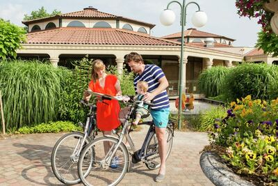 Resort Arcen 17, Location Villa à Arcen - Photo 13 / 20