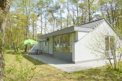 Maison de vacances dans le Limbourg dans une forêt