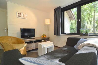 Maison de vacances cosy dans le Limbourg dans la forêt
