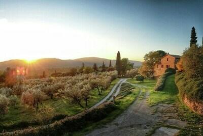 Fienile, Location Gite à Lucignano - Photo 29 / 39