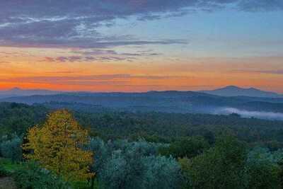 Fienile, Location Gite à Lucignano - Photo 30 / 39