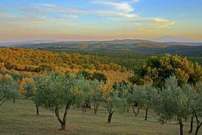 Agriturismo Argena - Appartamento per 4 persone, Location Gite à Lucignano - Photo 26 / 32