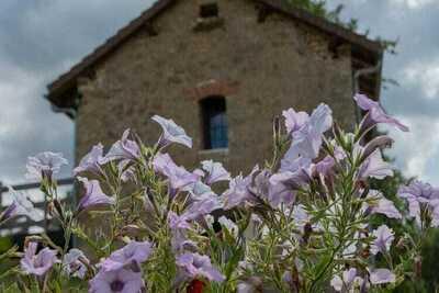 Location Maison à Saint Cernin de l'Herm - Photo 32 / 39