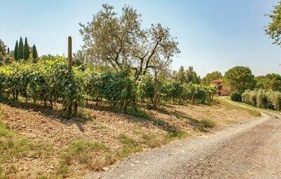 Al Vecchio Mulino, Location Maison à Lorenzana (PI) - Photo 7 / 21