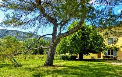 Location Maison à Malaucène - Photo 11 / 19