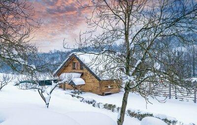 Location Maison à Gornji Zvecaj - Photo 31 / 58
